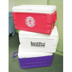 Igloo 48 Quart Ice Chest